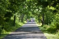 Saginaw Valley Rail Trail