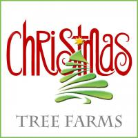 Michigan'ss Best Christmas Tree Farms