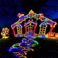 Families Enjoying Holiday Lights
