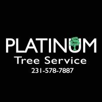 Providing Professional Tree Service in Michigan