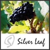 Silver Leaf Vineyard & Winery