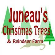 Juneau's Christmas Trees & Reindeer Farm