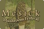 Annual Mesick Mushroom Festival