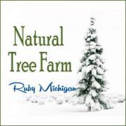 Natural Tree Farm in Ruby Michigan