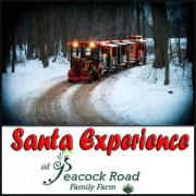 Santa Experience at Peacock Road Family Farm
