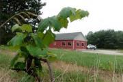 Cadillac Winery