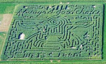 Frankenmuth Corn Maze in Frankenmuth Michigan