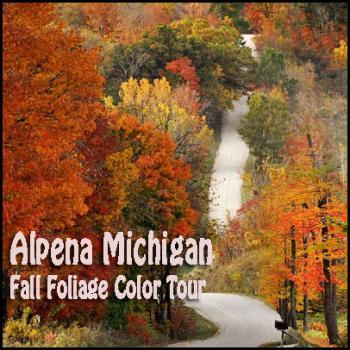 Alpena Fall Foliage Color Tour