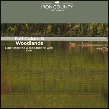 Iron County Fall Colors and Woodlands