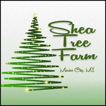 Shea Christmas Tree Farm in Marine City Michigan