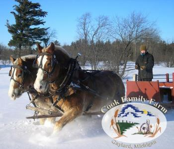 Cook's Family Sleigh Ride