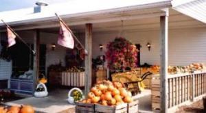 Nottawa Fruit Farm