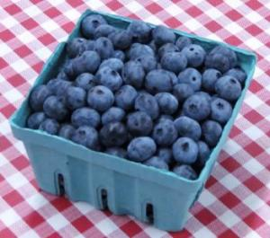 Blueberry's at Montrose's Blueberry Festival