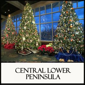 Christmas in Region 7 Central Lower Peninsula Area
