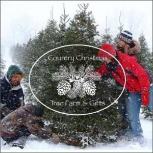 Country Christmas Tree Farm & Gifts in Greenwood Michigan