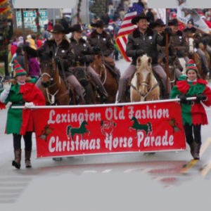 Lexington's Christmas Horse Parade