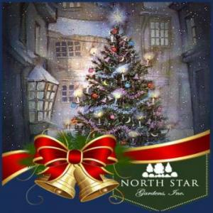 North Star Christmas Tree Farm in Wolverine Michigan