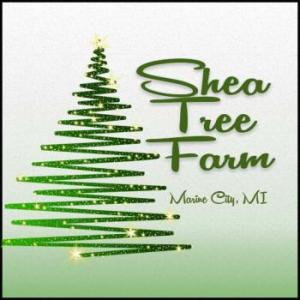 Shea Christmas Tree Farm in Marine City Michigan