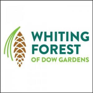 Whiting Forest of Dow Gardens
