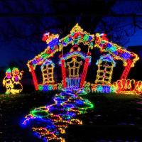 Families Enjoying Holiday Lights