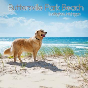 Buttersville Beach Ludington Michigan