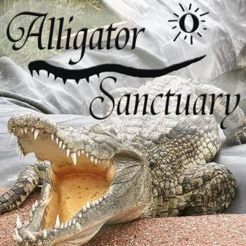 Critchlow Alligator Sanctuary