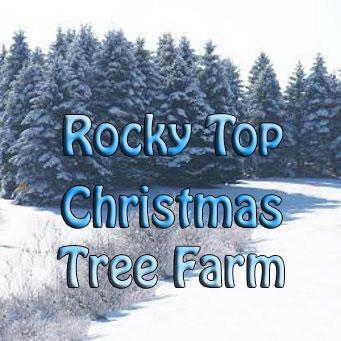 Rocky Top Christmas Tree Farm