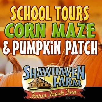 Shawhaven Farm Fall Corn Maze & Pumpkin Patch in Mason Michigan
