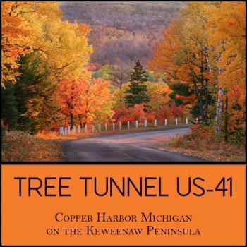 Copper Harbor Michigan US 41 Tree Tunnel