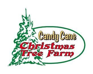 Candy Cane Christmas Tree Farm