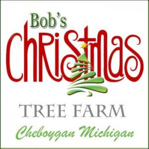 Bob's Christmas Trees in Cheboygan Michigan