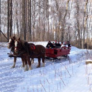 Winter Rainbow Ranch Sleigh Ride's