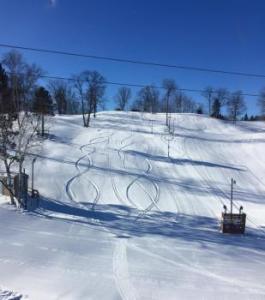 Snow Snake Ski & Golf