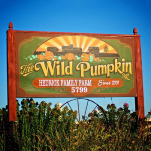 The Wild Pumpkin in Beaverton Michigan
